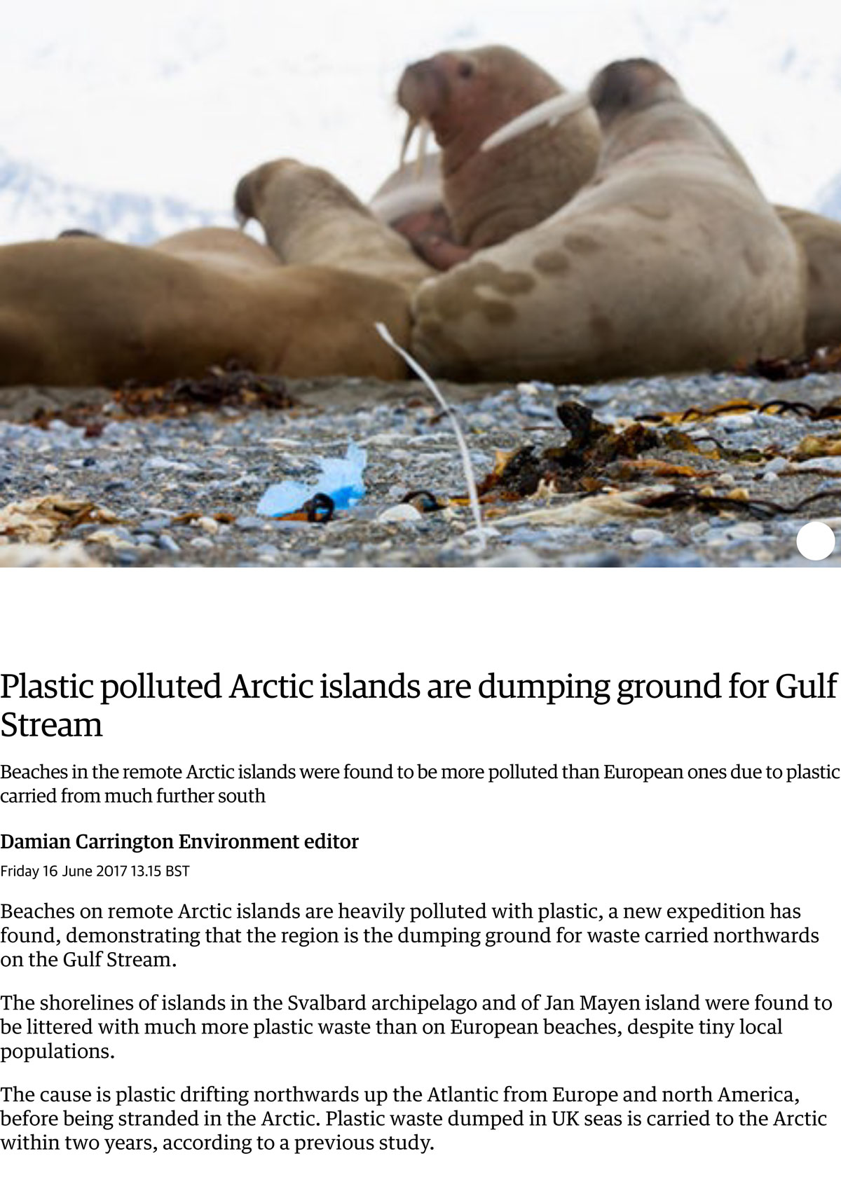Plastic Polluted Arctic Islands Are Dumping Ground For Gulf Stream