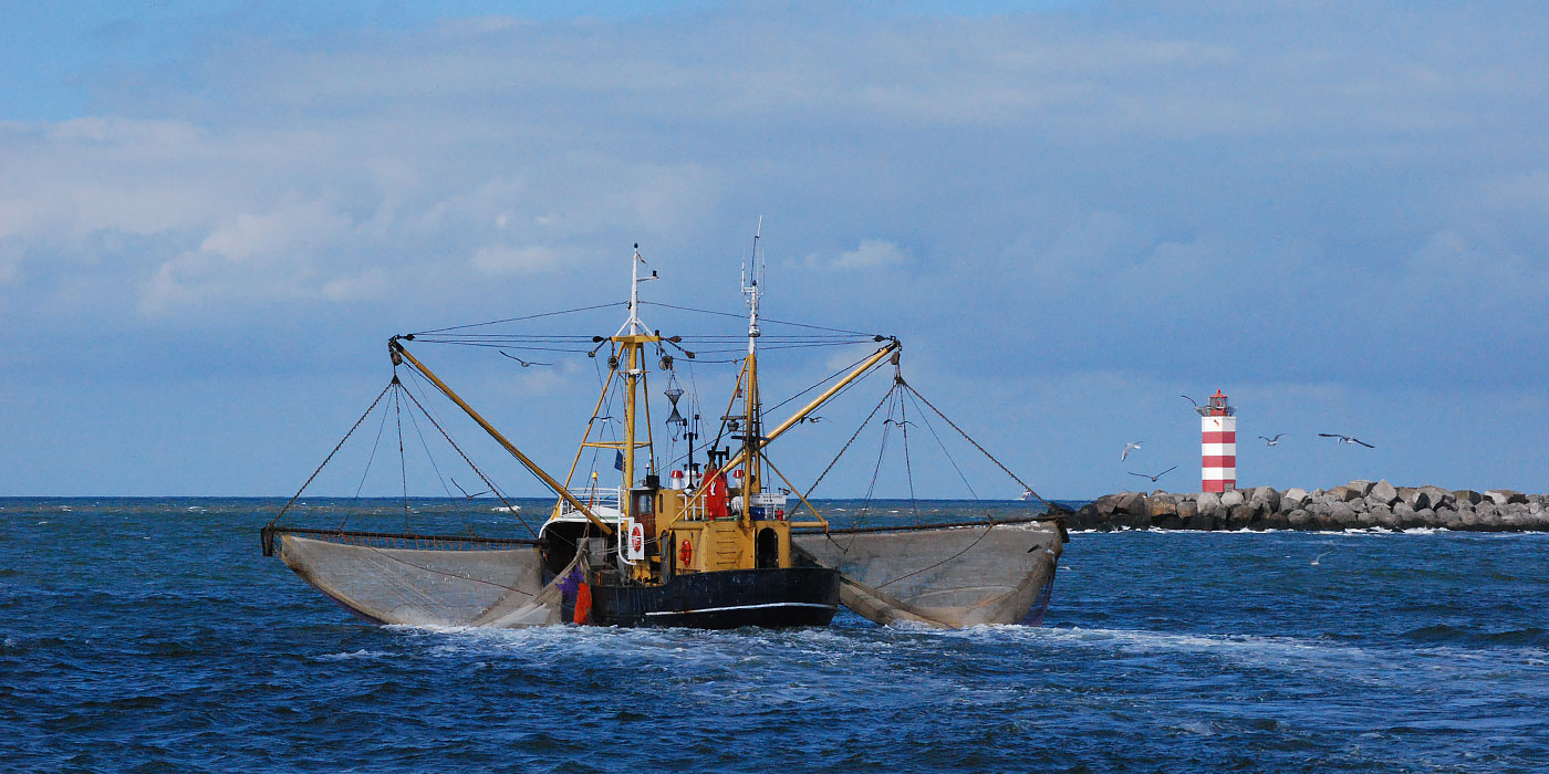 Leeways Marine
